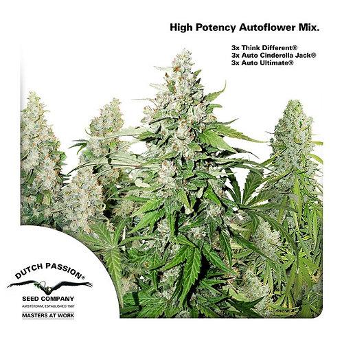 Dutch Passion High Potency Autoflower Mix