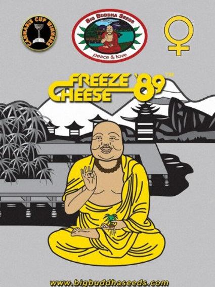 Big Buddha-Freeze Cheese Feminized