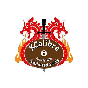 X-Cali Seed Logo 2019.jpg