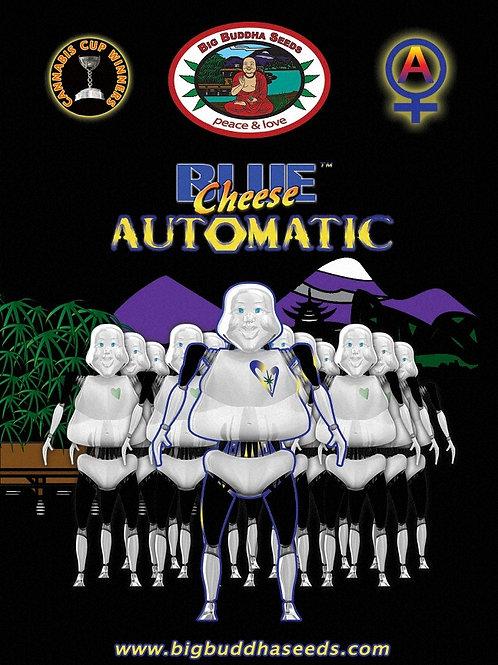 Big Buddha-Blue Cheese Auto Feminized