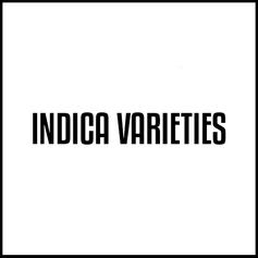Indica Varieties.png