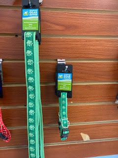 Green Paws Leash and Collar Set