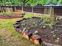 Kendrew Garden Summer 4.jpeg