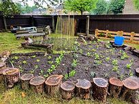 Kendrew Garden Summer 3.jpeg