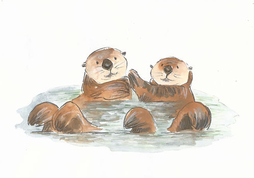 Otter 2 cropped.jpg