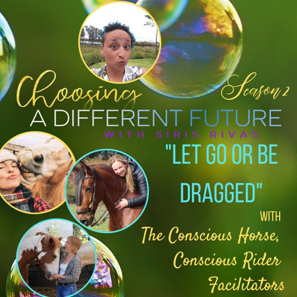 Conscious Horse Conscious Rider Facilitators.jpg