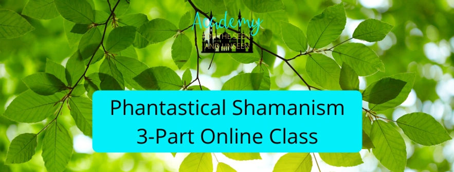 Academy Phantastical Shamanism Banner .j