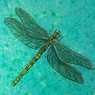 Painted Glass Dragonfly.jpg