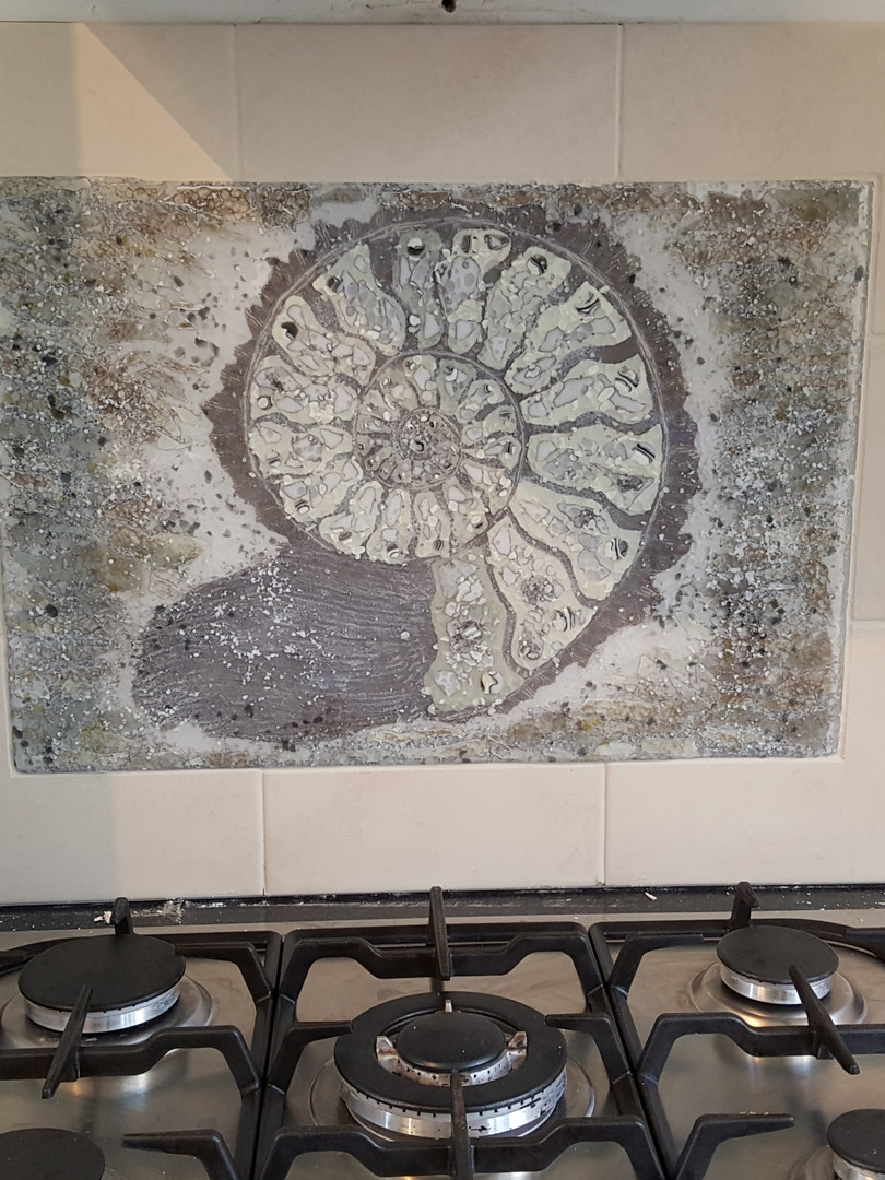 Ammonite Kitchen Splashback