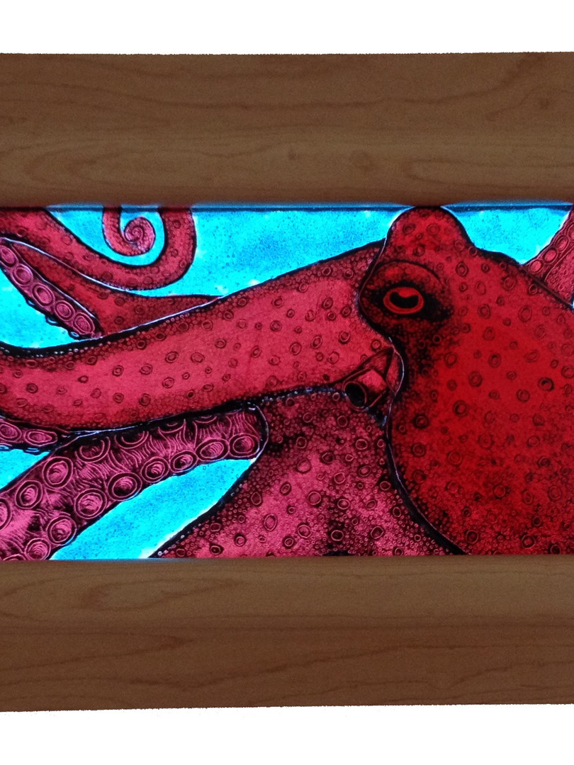 Octopus in backlit panel