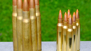 Are AR-15 Rifles Too Powerful for Hunting?