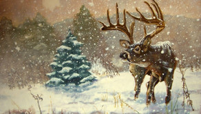 Is This the Most Legendary Whitetail of All Time?