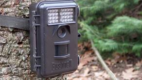 Springtime Tips for Trail Cameras