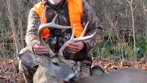 We're Hunting Smarter Bucks Today