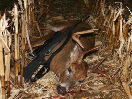 My Favorite Deer Cartridge—the 7mm-08