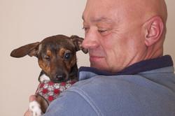 puppy-696249_960_720