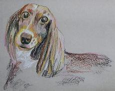 Elazar's Pet Art.jpg