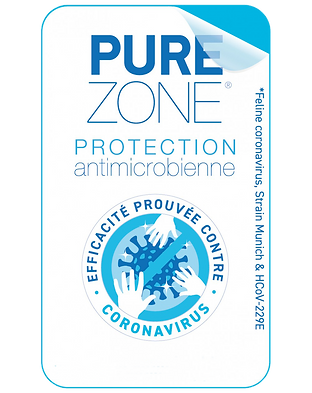 LOGO PURE ZONE.png