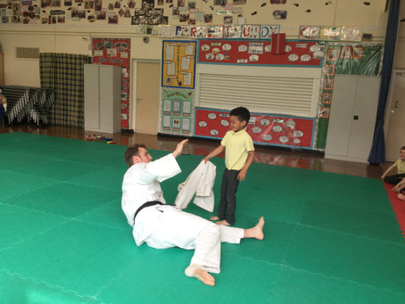 Reception Judo Session