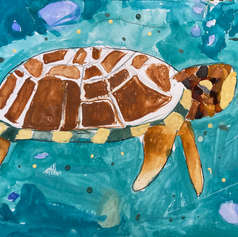Turtle Flying