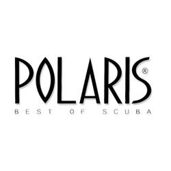 Polaris_Website-be68ffca