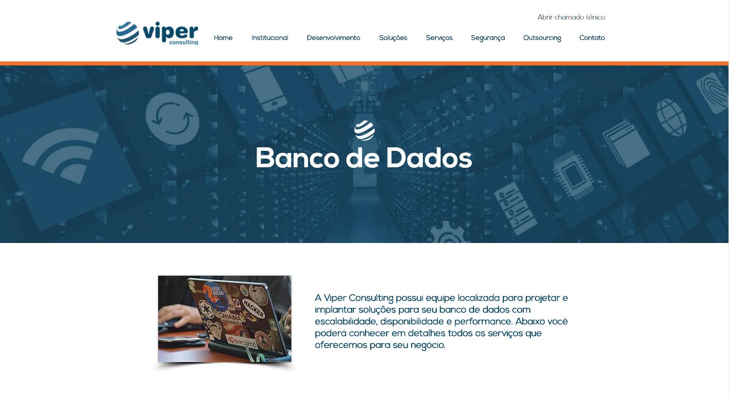 Site Viper Consulting