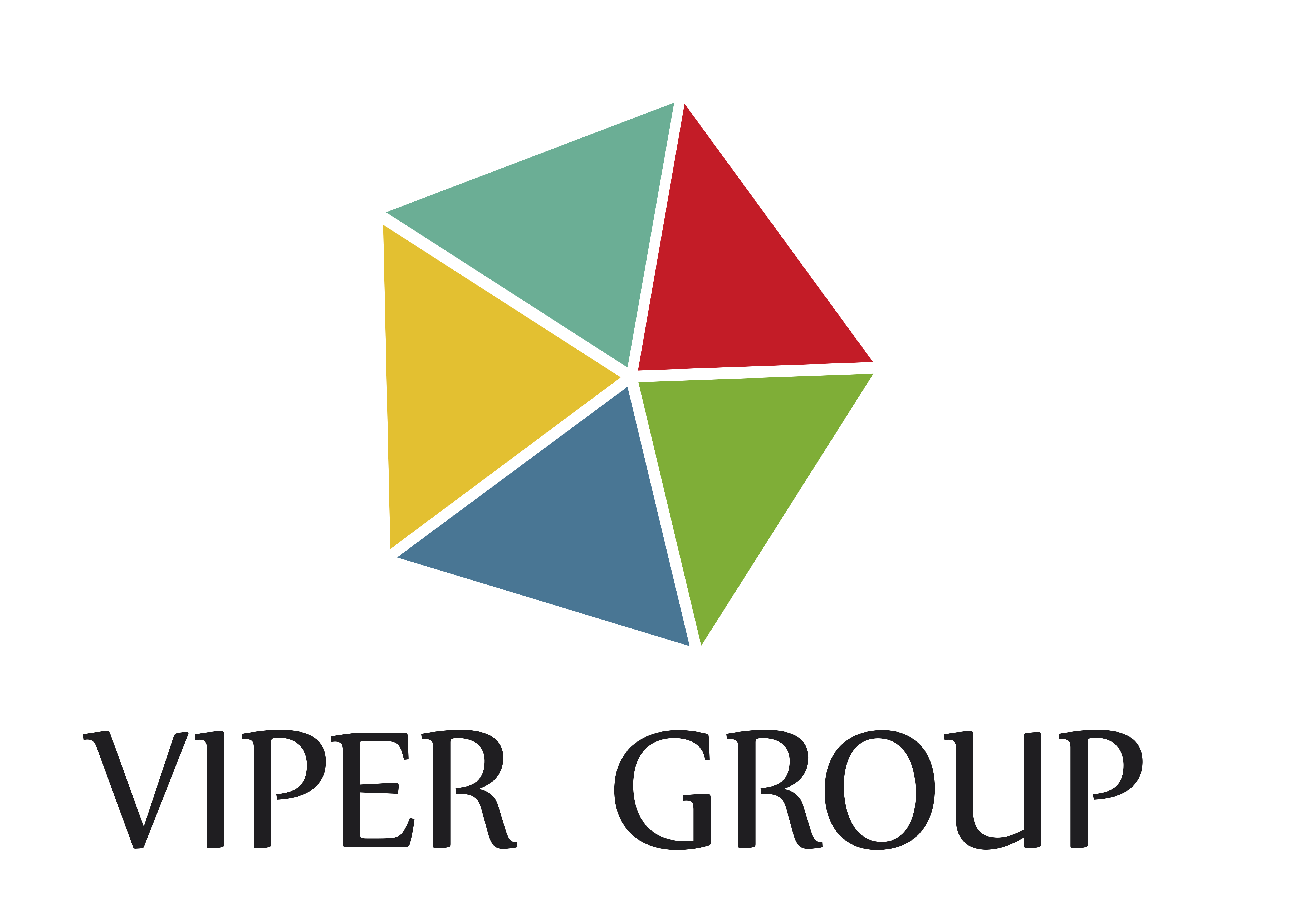 Logo Viper Group