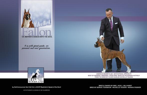 Fallon Ad