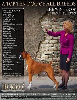 Romeo Ad