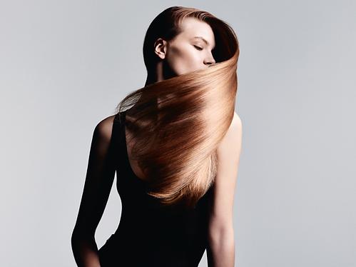 Cheveux-Longs.png