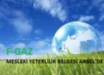 F-GAZ.png