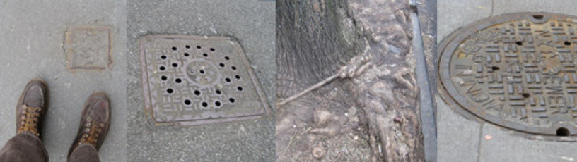 As I walked home I found my view adjusted: manholes, drains, basements, vault covers — there is a world down there!