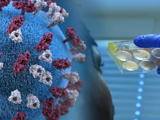 Laboratorio Pfizer dice que su vacuna neutraliza cepas de Reino Unido