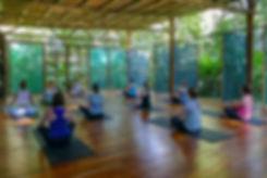 ecolodge_yoga_retreat.jpg