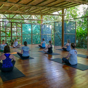 Yoga in the Osa