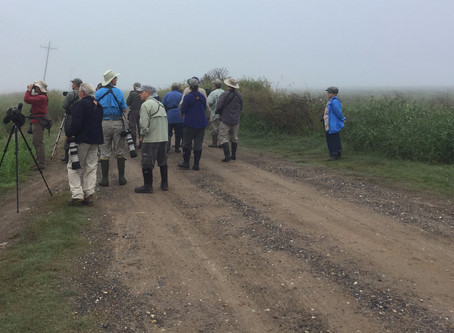 Pre-YRARF Wednesday off to a foggy start