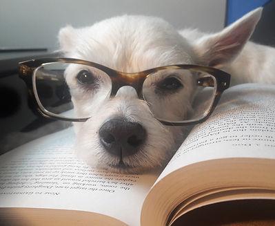 Benny-glasses.jpg