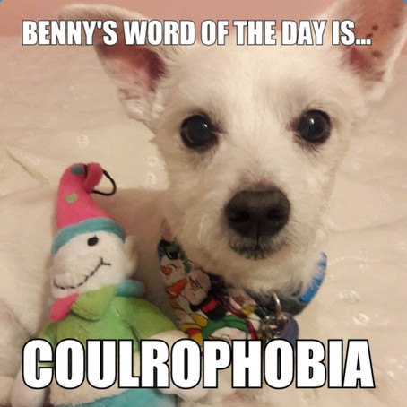 Benny's Word of the Day is coulrophobia