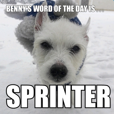 Benny's Word of the Day is sprinter