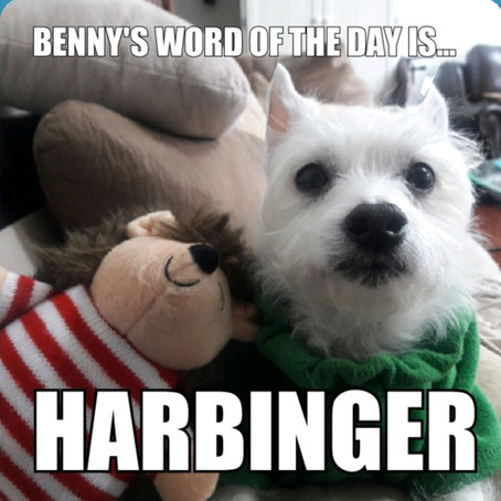 Benny's Word of the Day is... harbinger
