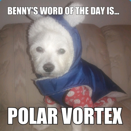 Benny's Word of the Day is... polar vortex