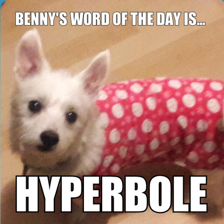 Benny's Word of the Day is...hyperbole