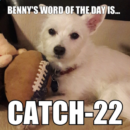 Benny's Word of the Day is Catch-22
