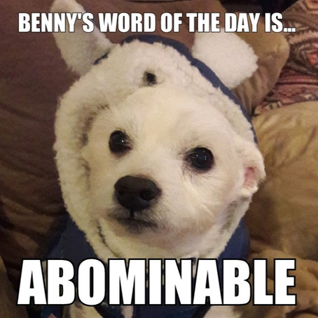 Benny's Word of the Day is... abominable