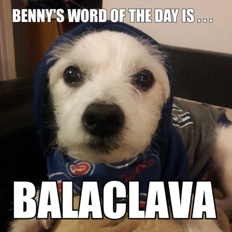 Benny's Word of the Day is balaclava