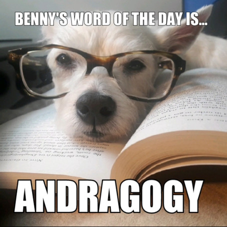 Benny's Word of the Day is... andragogy