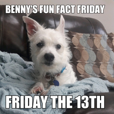 Benny's Friday Fun Fact: Friday the 13th