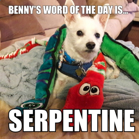 Benny's Word of the Day is serpentine