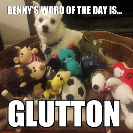 Benny's Word of the Day is glutton