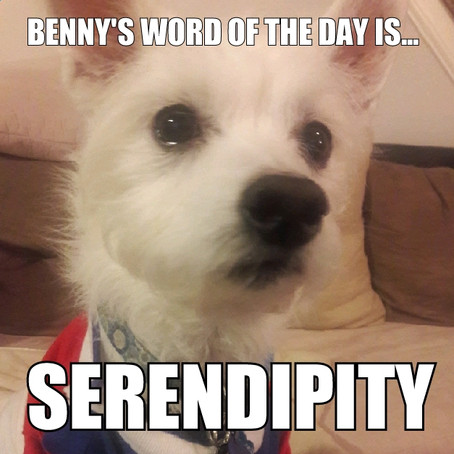 Benny's Word of the Day is... serendipity